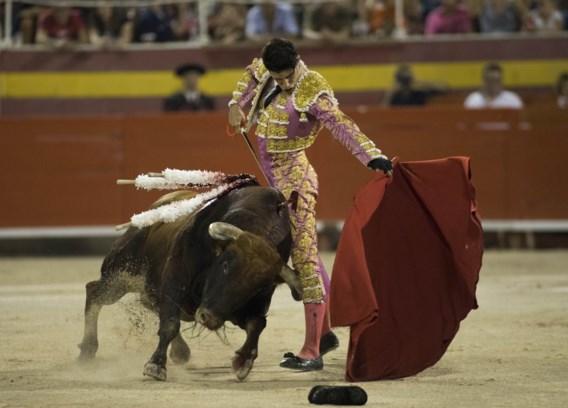 Spaanse burgemeester schrapt stierengevechten wegens controversiële namen