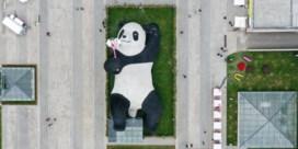 Chillax in China: Als niet opstaan een opstand wordt