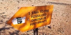 Waarom de dinosaurus Zoeloe moet leren spreken