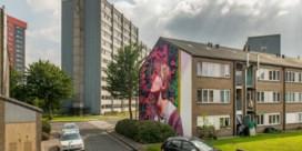 Straatkunstenaars zetten Nieuw Gent in de verf