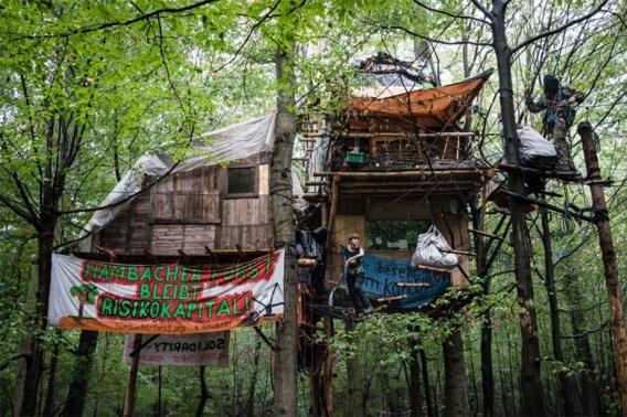 Boomhutten van betogers Duits oerbos mochten niet ontruimd worden