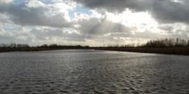 Vlaanderen is natuurgebied rijker: Polders in Kruibeke erkend als reservaat