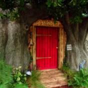 Huisje van Winnie de Poeh komt tot leven in Ashdown Forest