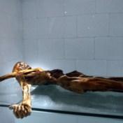 30 jaar geleden werd ijsmummie Ötzi gevonden in de Zuid-Tiroler Alpen