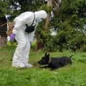 Eerste zedenhond van federale politie kan sperma lokaliseren