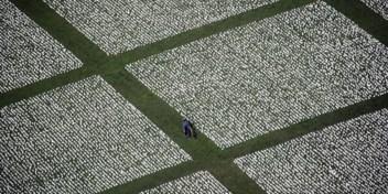 Oorlogsslachtoffers