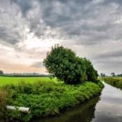 Weerbericht | Zon ruimt plaats voor wolken