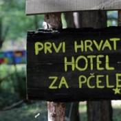 Familie in Kroatië opent vijfsterrenhotel voor bijen
