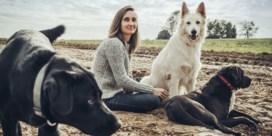 Knuffelen we onze honden te veel?
