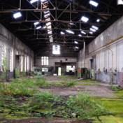 Twee West-Vlaamse ondernemers winnen opbod over Arsenaal