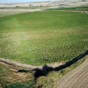Spaanse politie ontdekt grootste wietplantage van Europa