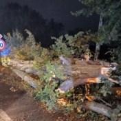 KMI blijft waarschuwen voor rukwinden, regen en stormtij, noodnummer blijft actief