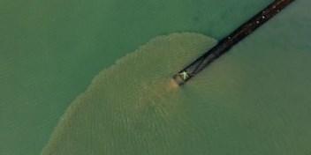Drone filmt hoe zuiveringsstation rioolwater naast natuurgebied in zee pompt