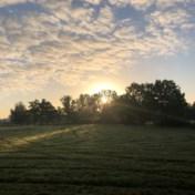 Weerbericht | Eerst veel wolken, later geleidelijk zonnig